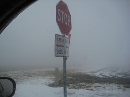 Crazy Fog - LeftTurn
